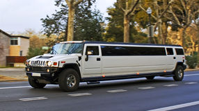 Free Limousine Stock Photography - 13948142