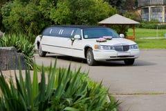Limousine blanche de mariage. Ornated avec des fleurs photographie stock