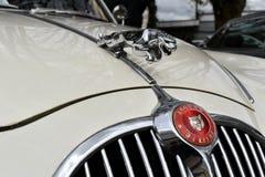 Limousine 1968 Jaguars 340 lizenzfreie stockfotos