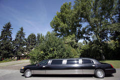 Limousine noire Photo libre de droits