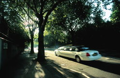 Limousine in sunny avenue Royalty Free Stock Photo