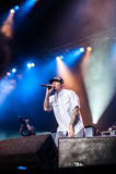 Limp συναυλία Bizkit στοκ εικόνες