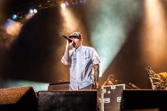 Limp συναυλία Bizkit στοκ φωτογραφία