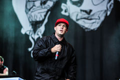 Limp συναυλία Bizkit στοκ φωτογραφία με δικαίωμα ελεύθερης χρήσης