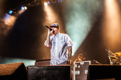 Limp Bizkit concert Stock Photography