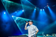 Limp Bizkit concert Royalty Free Stock Photography