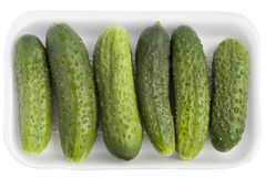 Limp old green cucumbers. In a isolatedwhite  plastic container Royalty Free Stock Photo