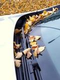 Limpadores do carro imagens de stock