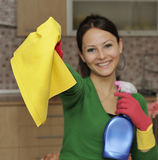 Limpando a casa fotografia de stock royalty free