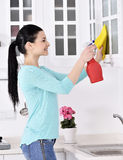 Limpando a casa fotografia de stock