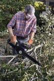 Limpando a jarda após uma tempestade imagem de stock royalty free