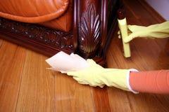 Limpando o sofá. Fotos de Stock