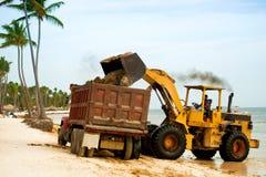 Limpando a praia das algas com um trator e um descarregador imagem de stock royalty free