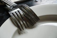 Limpe forquilhas em uma luz e em uma sombra brancas da manhã da placa Imagens de Stock Royalty Free