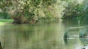 Limpe Green River filme