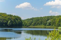 Limpe a lagoa da floresta aonde vir satisfazer patos da sede, cisnes, cegonhas e outros pássaros imagem de stock royalty free