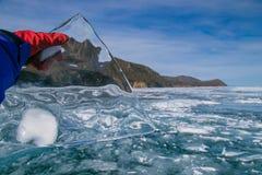 Limpe o gelo transparente Imagem de Stock