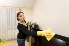 Limpeza da casa Imagens de Stock Royalty Free