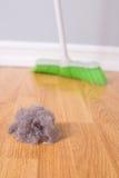 Limpeza da primavera Foto de Stock