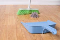 Limpeza da primavera Imagens de Stock