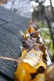 Limpeza da queda - folhas na calha Imagem de Stock
