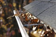 Limpeza da queda - folhas na calha Imagem de Stock Royalty Free