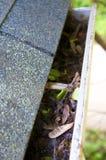 Limpeza da queda - folhas na calha Foto de Stock Royalty Free