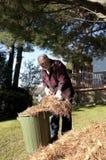 Limpeza da terra do outono fotografia de stock