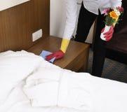 Limpeza do badroom das mulheres novas Imagem de Stock