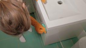 Limpeza do banheiro e do toalete vídeos de arquivo