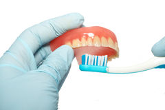 Limpeza do dentes Fotografia de Stock