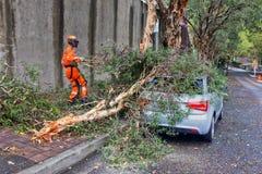 Limpeza do furacão dos serviços de urgências fotografia de stock