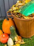 Limpeza do jardim do outono Fotografia de Stock