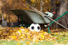 Limpeza outonal do jardim Fotografia de Stock