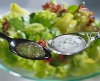 Limpezas da salada Imagem de Stock