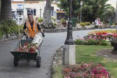 Limpiador del parque en Napier, Nueva Zelanda Fotografía de archivo libre de regalías