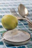 Limpiadores orgánicos - bicarbonato del vinagre blanco, del limón y de sodio imágenes de archivo libres de regalías