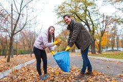 Limpian a un adolescente con un papá en un parque, recogiendo el follaje caido en un bolso de basura Fotografía de archivo libre de regalías