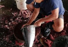Limpiando y cortando a Tuna Fish Imagen de archivo libre de regalías
