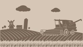Limpiar paisaje rural grano-creciente Fotografía de archivo libre de regalías