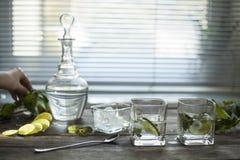 Limpie el agua clara con las hojas del hielo y de menta Primer Foto de archivo libre de regalías