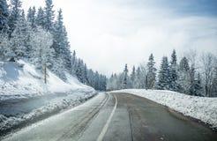 Limpie el camino del invierno en la montaña con vueltas y la curva con la O.N.U de los árboles Imagen de archivo libre de regalías