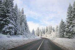 Limpie el camino del invierno en la montaña con vueltas y la curva con la O.N.U de los árboles Fotografía de archivo