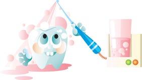 Limpie el diente Imagen de archivo libre de regalías
