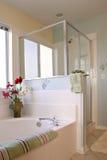 Limpie el interior del cuarto de baño Imagen de archivo