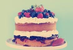Limpie el pastel de capas con esponja con crema y bayas azotadas frescas, con el filtro retro Foto de archivo libre de regalías