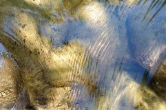Limpie el río de la montaña Fotos de archivo