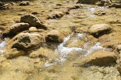 Limpie el río de la montaña Fotografía de archivo libre de regalías