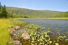Limpie el río del norte Fotos de archivo