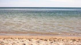 Limpie la costa con agua transparente almacen de metraje de vídeo